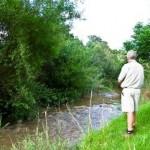 Amberleigh River