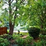 Amberleigh garden and Pool