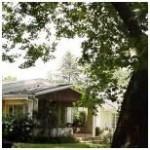 Wild Berry Gymnodgene Cottage Exterior