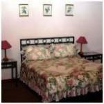 Wild berry Gymnogene bedroom one
