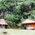 Waterwood Fishermans Log cabin