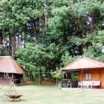 Waterwood Log cabin