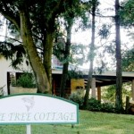 Waterwood - Pinetree Cottage