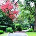 Lythwood Gardens